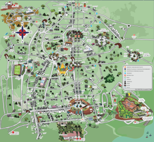 cartina del vomero