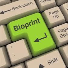 bioprint