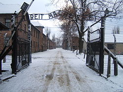 250px-Auschwitz_I_entrance_snow