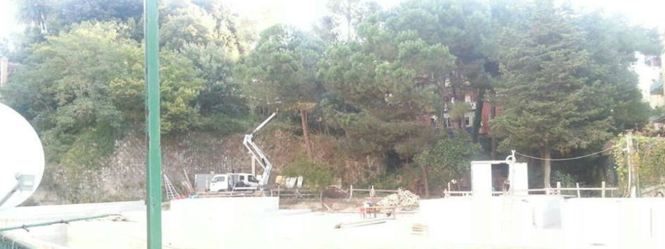 alberi-montedonzelli