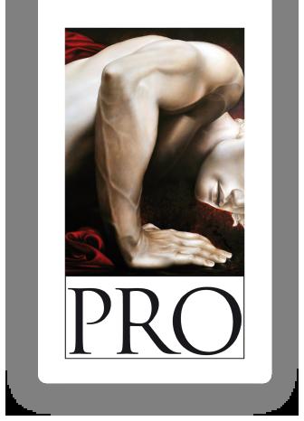 logo_prosud