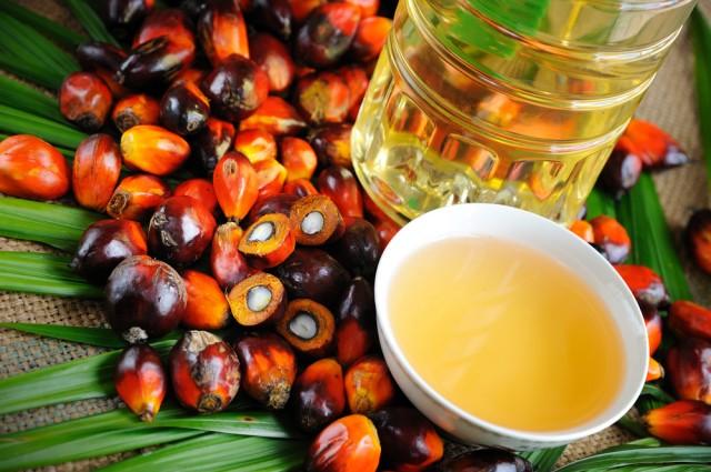 sostituire-olio-palma-2-640x425