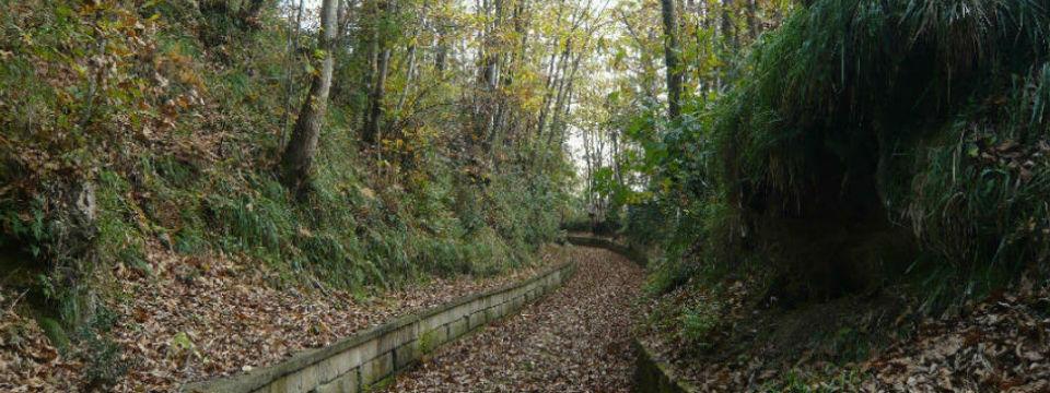 Parco-Camaldoli