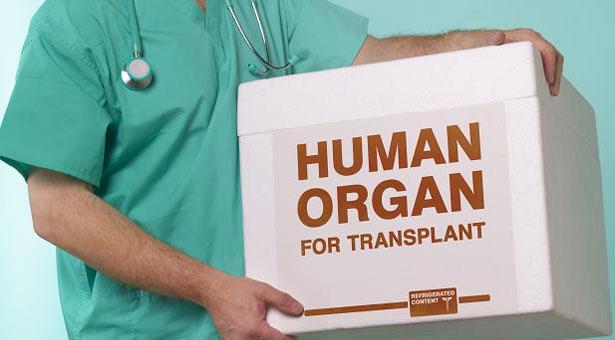 trapianto-organi