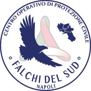 FALCHI DEL SUD_DEF