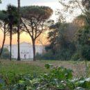 Napoli-Villa-Floridiana-immersa-nel-degrado-appello-al-ministro-Bonisoli-affinché-si-intervenga-1