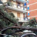 Vomero, crollo in via Belvedere (4)