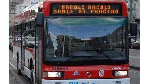 1194263_0150814_autobus_eav_-
